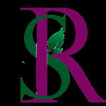 rayehesalamat logo