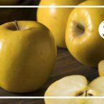 فالوده سیب مفرح و مقوی قلب